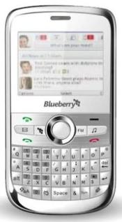 SL Blueberry 5800-9
